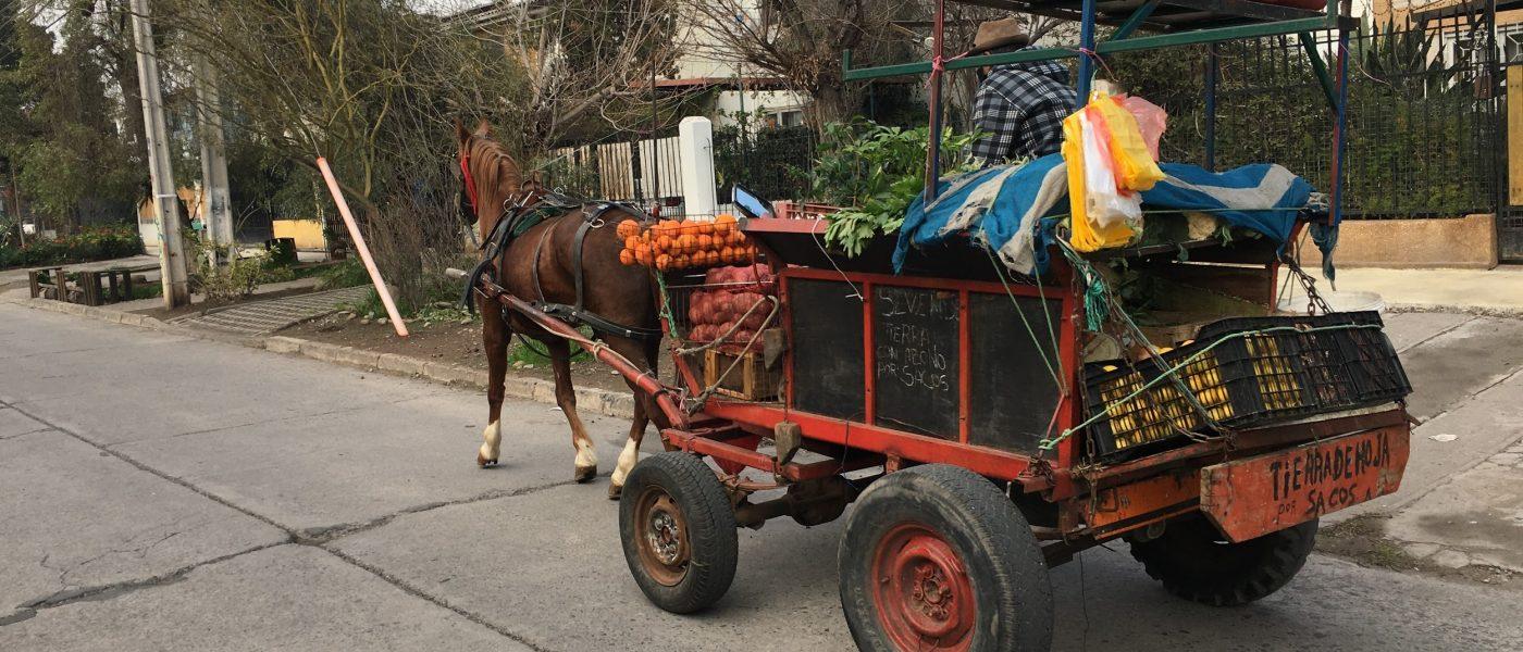 Foto-ensayo: Economía informal en tiempos de pandemia